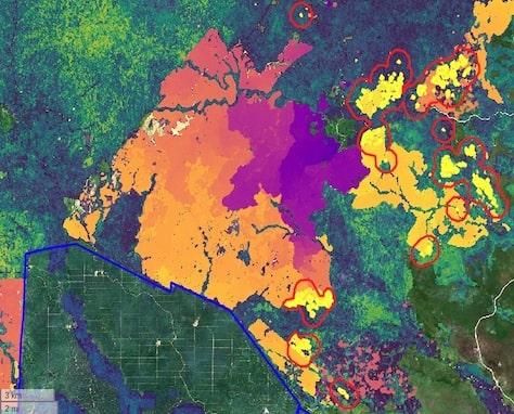 Deforestation and Forest Carbon tile-min